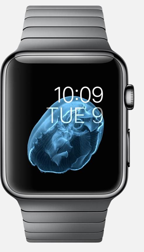 The Authoritative List of Apple Watch Specs – Jeff Boulter ...